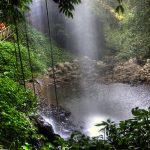Adéntrate en el Parque Nacional de Dorigo