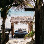 Nest Tulum: un lugar secreto en el Caribe