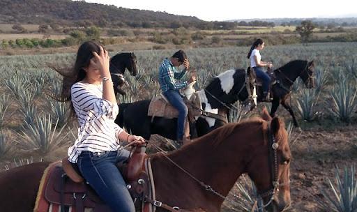 rutas a caballo por México